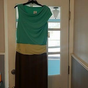 Multi Color Flattering Dress